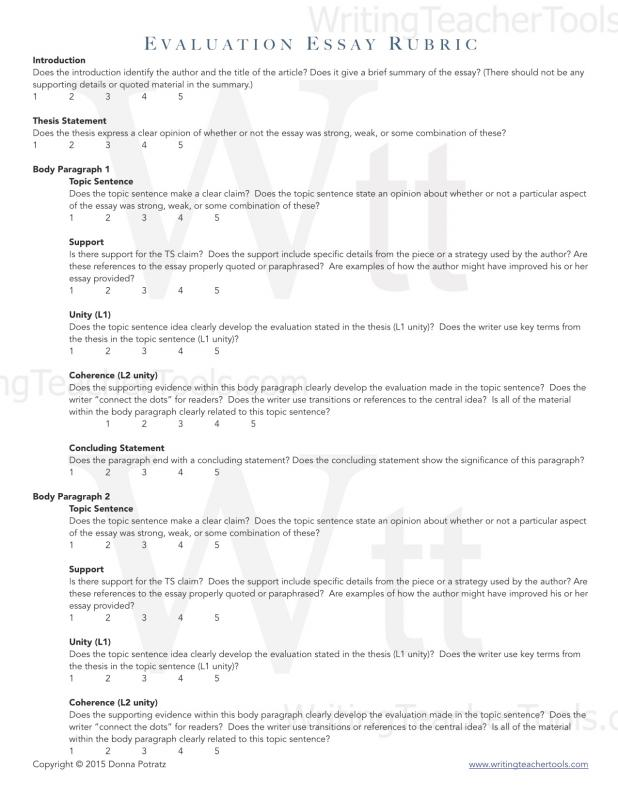 Evaluation Essay Example Template Business