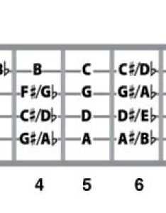How to play bass guitar notes also rh nationalguitaracademy