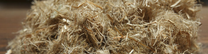 The Challenge of Creating a Domestic Hemp Fiber Industry