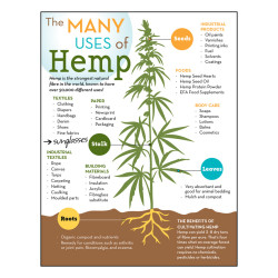 Uses_of_Hemp_Poster_Web_Store2