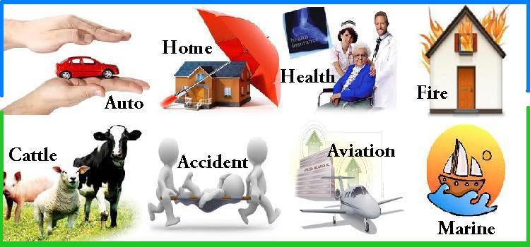 Insurance Types - Different Types of Insurance Review