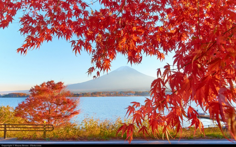 Fall Wallpaper Japan Japan S Greatest Challenge And It S Not China Massive