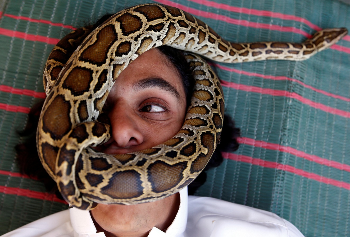 Coronavirus Outbreak in China Could Have Come from Snakes | The ...