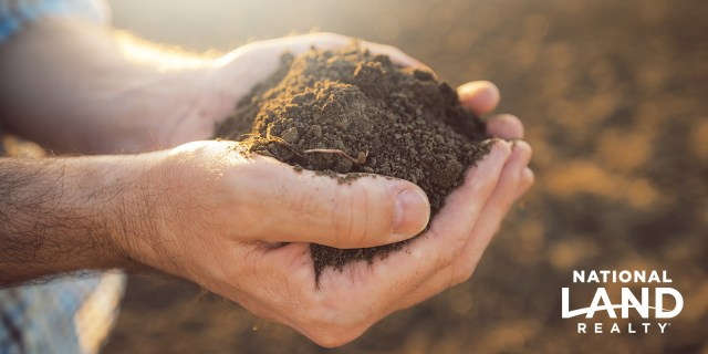 Get to Know Your Soil