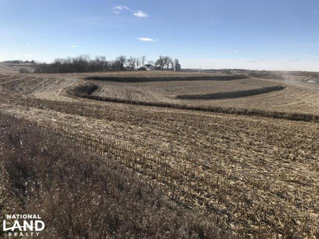 North Earling 50 Acres of Farm Land