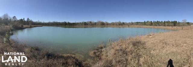 Vidalia Pond Property