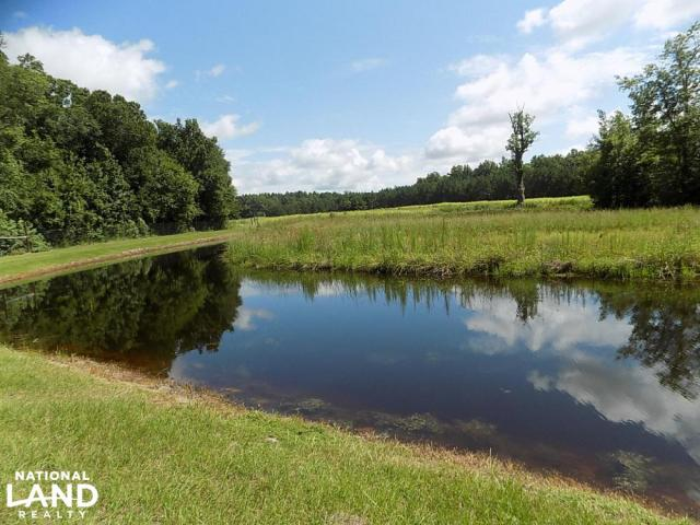 Grant Tract Hunting Preserve