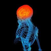 Mild Traumatic Brain Injury and the Pupillary Light Reflex