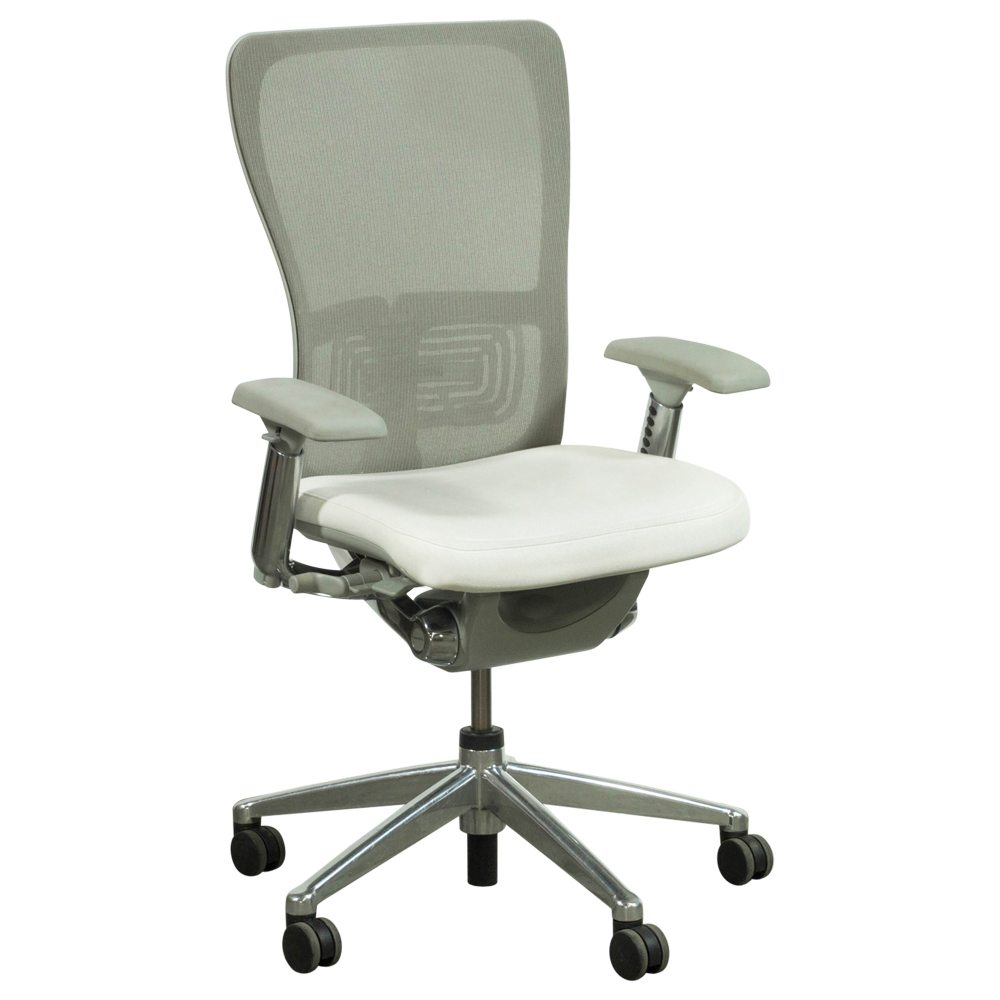 Haworth Zody Mesh Back Used Leather Task Chair, White and