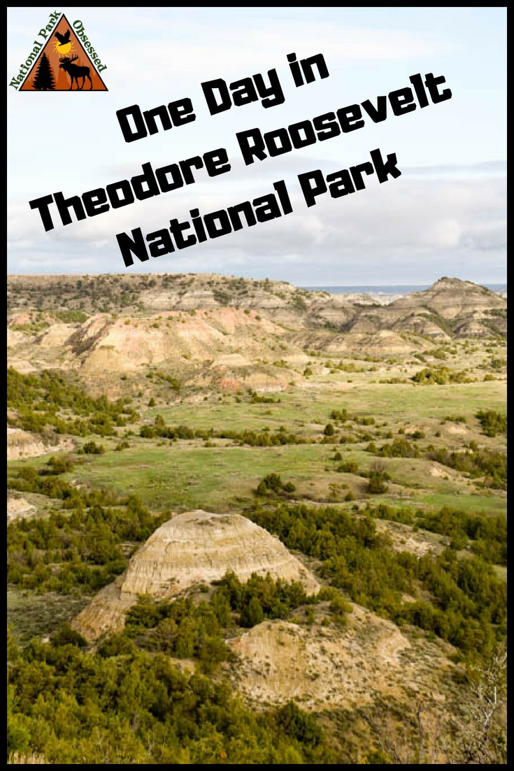 Make the most of your one day visit to Theodore Roosevelt National Park. Teddy Roosevelt National Park is the only national park in North Dakota but its badlands and wildlife is one not to be missed. Check out how to spend one day in Theodore Roosevelt National Park. #NationalPark #NationalParks