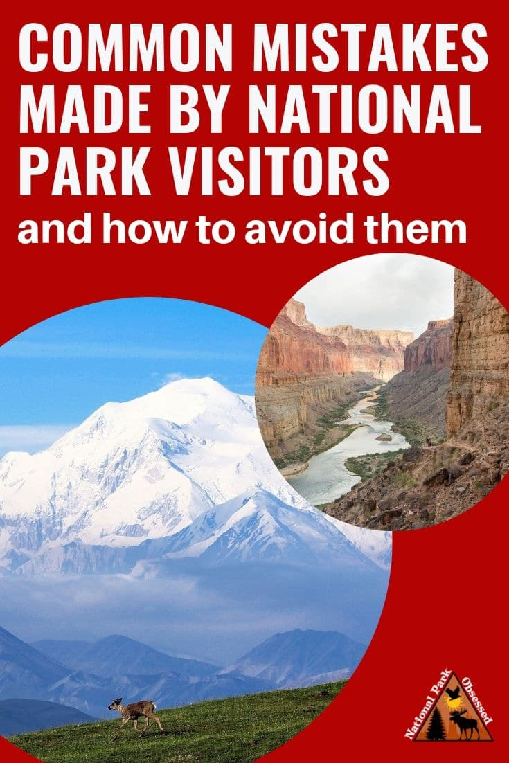Learn how to avoid making the most common mistakes made by national park visitors.  Avoiding these mistakes will increase your enjoyment of the visit.