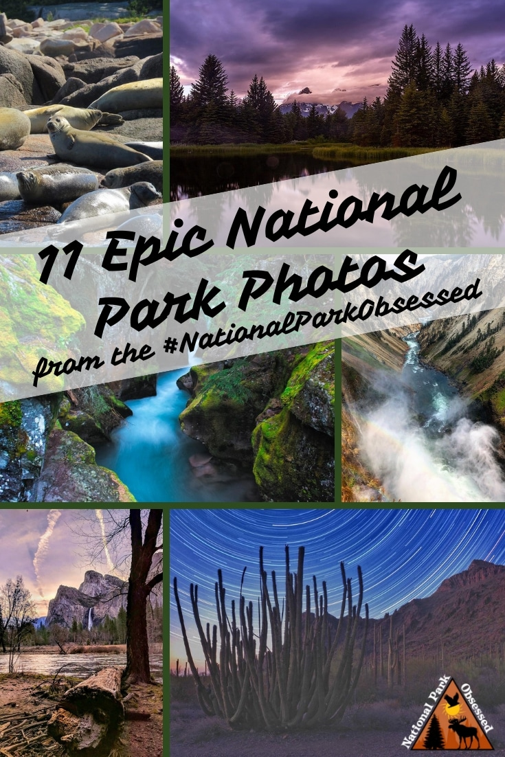 Check out some of the most epic national park photos from the #NationalParkObsessed community.  August 2018 has been a hoot and here are the best photos.  #nationalparkgeek #findyourpark #nationalpark #nps #nationalparks