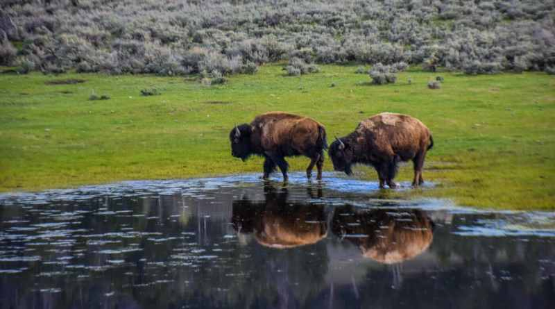2019 Black Friday and Cyber Week Deals for National Park Lovers