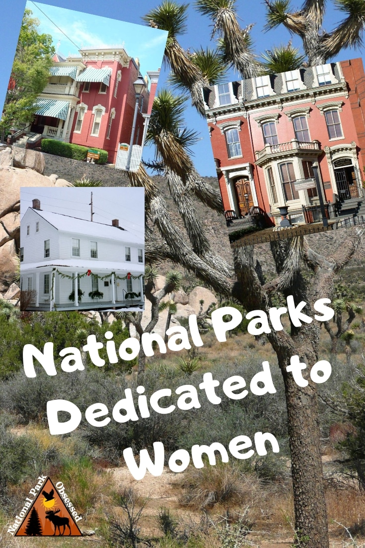 Women have/will play an important role in history. In the United States, there are ten national parks dedicated to women and their important work. Find out more about these amazing home. #internationalwomensday #womensrights #nationalparks #nationalpark #findyourpark #nationalparkgeek #nationalparkobsessed