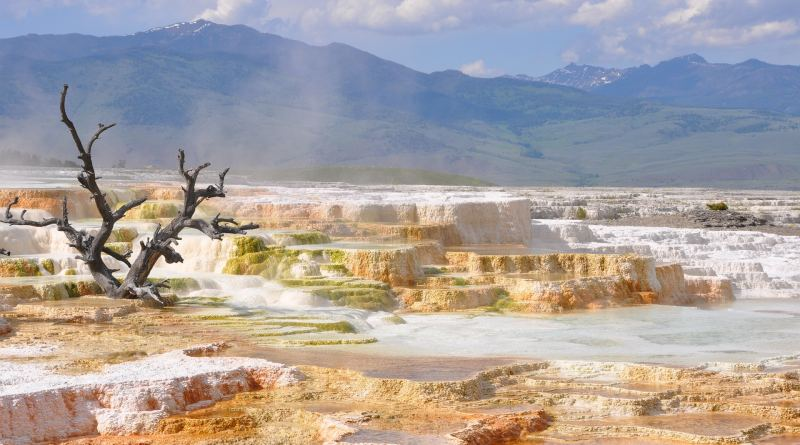 The Ultimate Guide to Camping in Yellowstone National Park