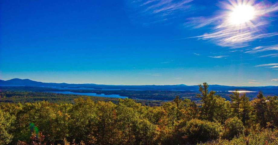 Finger lakes national forest