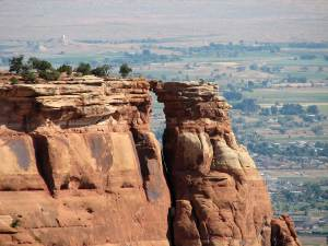 dog info and rules Colorado national monuments