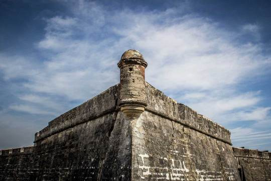 dog info and rules castillo national monuments
