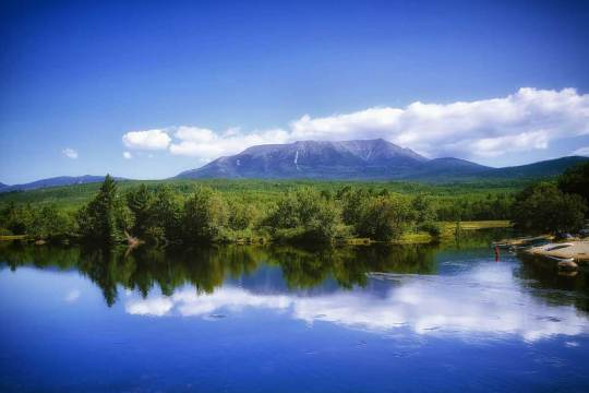 dog info and rules Katahdin Woods national monuments
