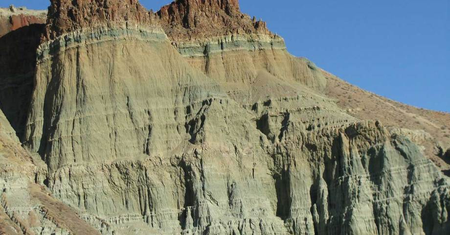dog info and rules john day fossil beds national monument