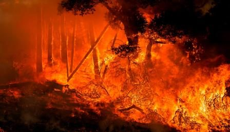 """After six days, Spain's """"Mega Fire Still ripping across the Mountains"""