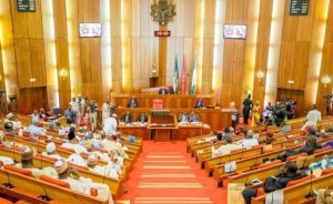 2020 Budget Scales Second Reading In House Of Reps
