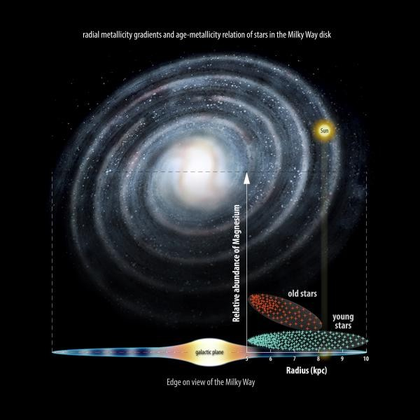 """The team has shown that older, 'metal-poor' stars inside the Solar Circle – the orbit of our Sun around the centre of the Milky Way, which takes roughly 250 million years to complete – are far more likely to have high levels of magnesium. The higher level of the element inside the Solar Circle suggests this area contained more stars that """"lived fast and die young"""" in the past. (Credit: University of Cambridge)"""