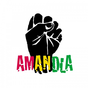 Image result for amandla power