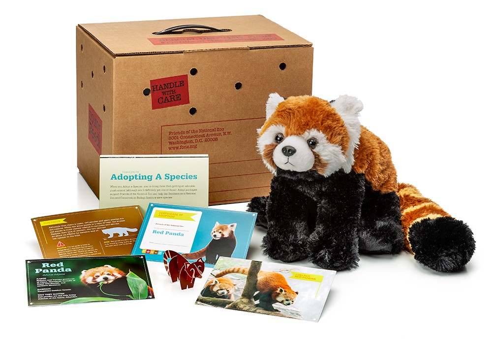 Adopt A Red Panda Smithsonians National Zoo