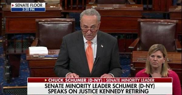 Schumer Demands Congress Wait Until After Midterm Elections to Confirm Kennedy Replacement (VIDEO)