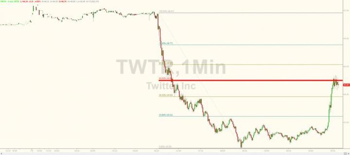Twitter Rebounds After CEO Claims The 70 Million Fake Accounts Were Not Part Of Its Metrics