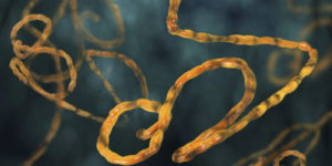 Global Health Security Threats: Time to Act Now