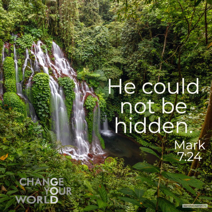 Weekly Reflection – He Could Not Be Hidden