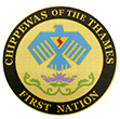 CHIPPEWAS-logo