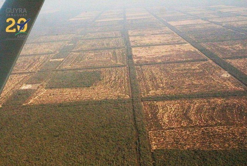 Deforestacion-Chaco-Paraguayo