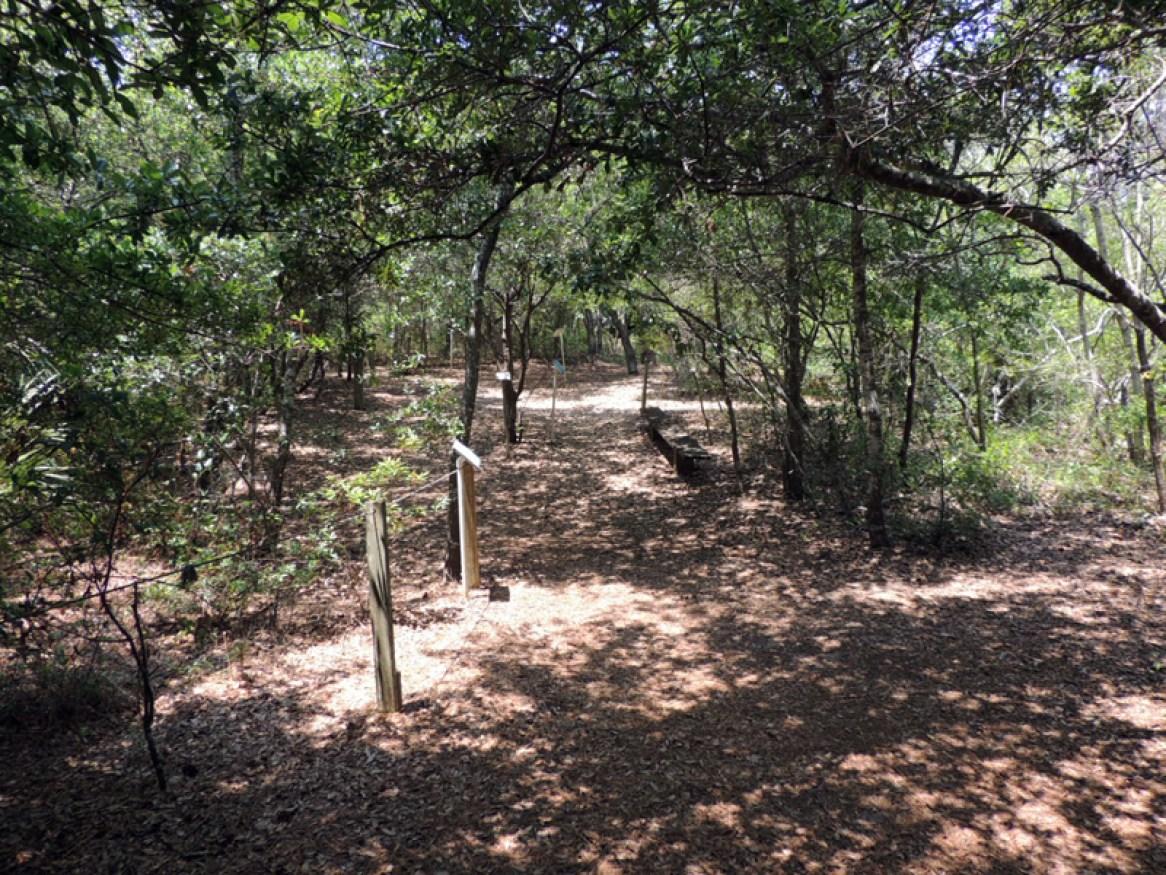 Trail140010