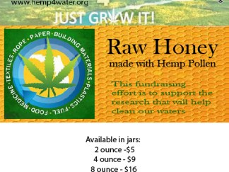 Fundraising for Hemp4Water