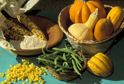 The Three Sisters: Corn, beans, and squash.