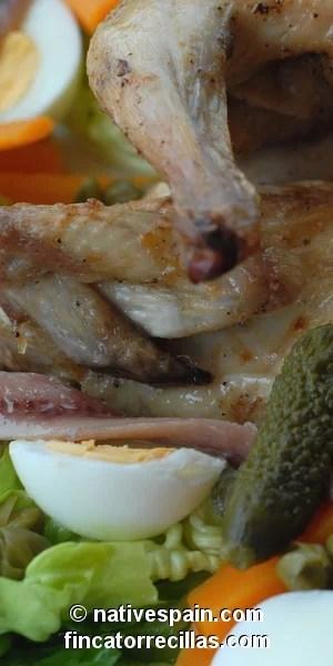 Bird Salad – Ensalada De Aves Sabrosa Y Esquisita – Spanish Recipe