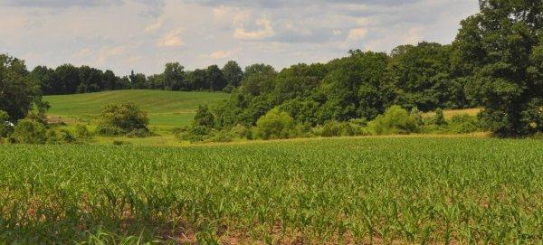 Green Hills Preserve - Natural Lands