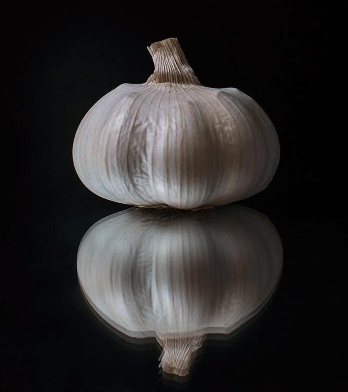 garlic reflection