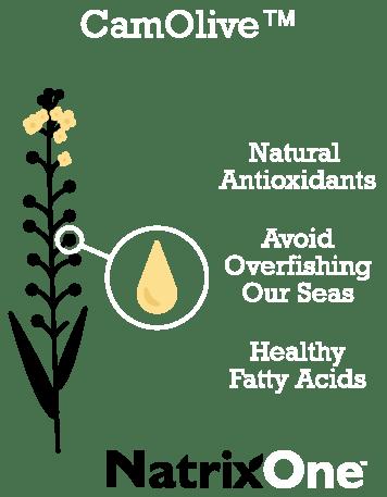 NatrixOne Oil Comparison