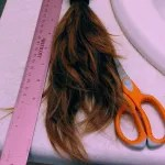 Ruler, scissors, and ponytail of hair.