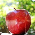 りんごは整腸作用が抜群!お肌と健康にもいい焼きりんごの作り方