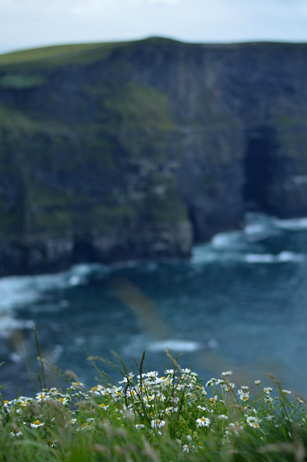 Cliffs of Moher // Nattie on the Road