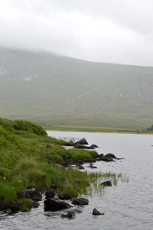 Foggy beautiful Ireland // Nattie on the Road