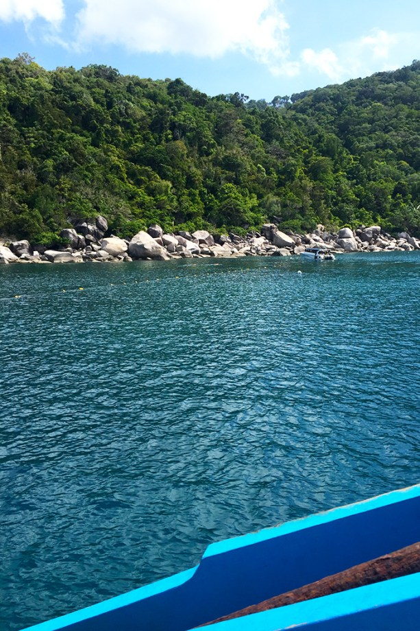 diving in Koh Tao