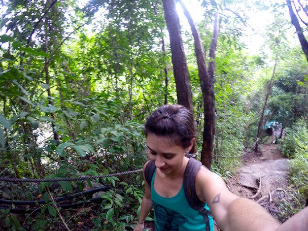 Hikes through the jungle in Koh Samui