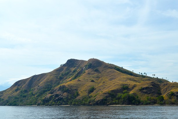 Island of Rinca, Indonesia