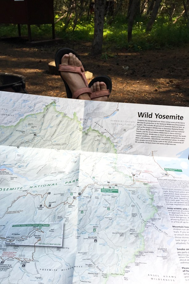 planning out hikes around the park